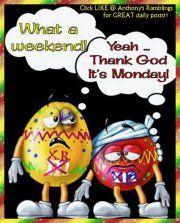 Someone's happy it's Monday