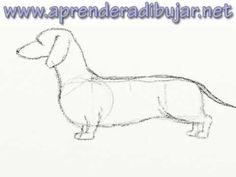 Cómo dibujar un perro salchicha paso a paso - YouTube