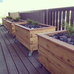 ModBOX Grande on Wheels- Planter Box