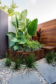 Amazing Fresh Frontyard and Backyard Landscaping Ideas Enjoy collection backyard styles and give me know your thoughts about these garden design ideas.Enjoy collection backyard styles and give me know your thoughts about these garden design ideas. Tropical Garden Design, Small Garden Design, Tropical Landscaping, Modern Landscaping, Front Yard Landscaping, Landscaping Ideas, Backyard Ideas, Tropical Gardens, Outdoor Landscaping