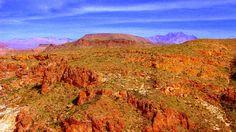 Taken while hiking in Gold Canyon, Arizona