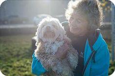 Vancouver, BC - Lhasa Apso Mix. Meet Cookie *adoption Pending, a dog for adoption. http://www.adoptapet.com/pet/17473431-vancouver-british-columbia-lhasa-apso-mix