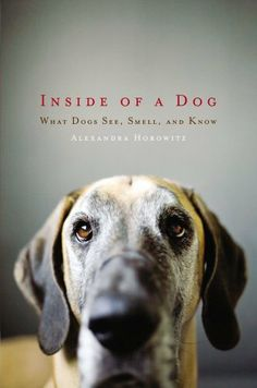 Inside of a Dog: http://www.amazon.com/Inside-of-a-Dog-ebook/dp/B002NT3B52/?tag=extmon-20