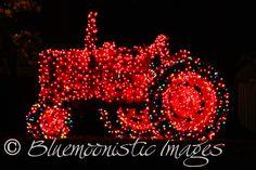 Christmas-on-the-Farm-XL.jpg (1024×683)