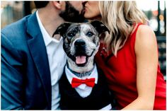 Adam & Jenny » Kelly Kate Photography Engagement pictures with dogs