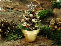 Bradut de Craciun din con de brad 🎄👇🏼 Table Decorations, Creative, Plants, Home Decor, Room Decor, Flora, Home Interior Design, Decoration Home, Plant