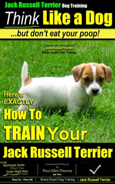 Jack Russell Terrier Dog Training. Think Like a Dog But Don't Eat your Poop! Breed Expert Jack Russel Terrier Dog Training Buy This Affordable Jack Russel Terrier Dog Training Guide Now http://www.amazon.com/dp/B00ICN4HZ6