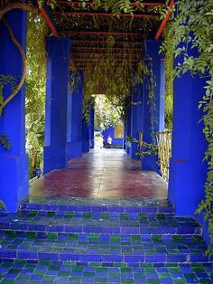 Located in Marrakech, Morroco, this garden was designed by French artist Jacques Majorelle. The special shade of cobalt blue used so extensively in the garden was named after him, bleu Majorelle.
