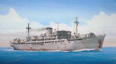 Mercante armado Ukishima Maru
