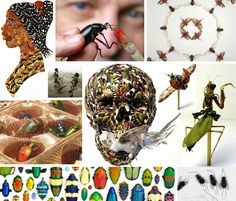 The Entomological Society of America says that of the 10 quintillion insects crawling our globe, we've come up with names for just one million of the actua Mini Beasts, Year 8, Jeepers Creepers, Insect Jewelry, Insect Art, Bugs And Insects, Natural Forms, Three Dimensional, Authors