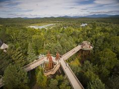 See the world from above on Wild Walk, The Wild Center's raised treetop walkway in the Adirondacks providing a whole new perspective on nature.