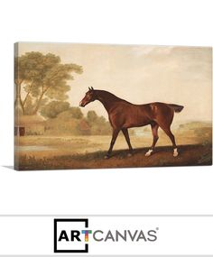 Ready-to-hang Eagle - A Bay Racehorse Canvas Art Print for Sale canvas art print for sale. Free hanging accessories and insurance. Racehorse, Art Prints For Sale, Canvas Art Prints, Moose Art, Eagle, Animals, Animales, Animaux, The Eagles