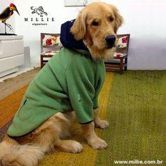 Manolo veste SOFT ZERMATT MILLIE.  Para aquecer seu Pet: www.millie.com.br