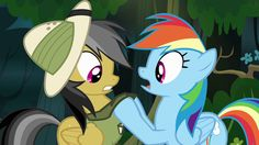 Rainbow grabs Daring's collar