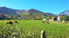 Here is beautiful and shiny #Rugova!: @valentinatolaj #kosovo #peje #peja #kosova #village #scenery