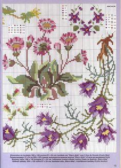 piccoli fiori viola