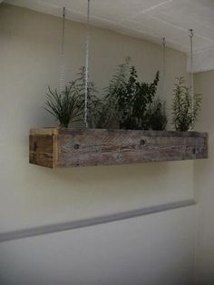 Hang your herbs up high in an awesome suspended planter like this. Form and function with a twist!