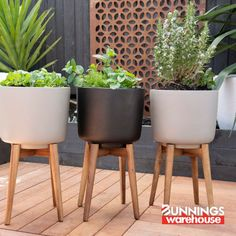 We've curated some of our favourite DIY projects to keep you busy while you're at home. Whether's in the home or in the garden, we've got you covered. Check out the DIY Daily! House Plants Decor, Plant Decor, Diy Projects To Keep You Busy, Outdoor Rooms, Outdoor Gardens, Small Backyard Landscaping, Garden Pots, Herb Garden, Relax