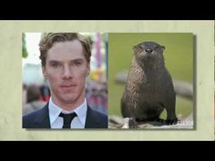 Benedict Cumberbatch is a Sexy Otter! (BBC America's THE BRIT LIST: 20 SEXIEST)
