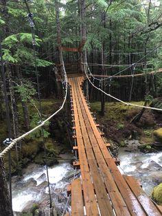 Grizzly Falls...the suspension bridges!