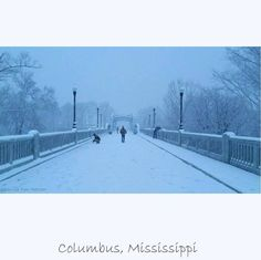 Dreamy image of my beautiful hometown, Columbus, #Mississippi Old 82 Bridge Over the Tombigbee River in a blanket of snow. {Photo thanks to Tom Hatcher} https://www.facebook.com/ThisIsOurSouth/photos/a.332928783472689.69899.325093580922876/715471151885115/?type=1&theater