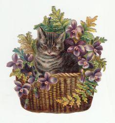 Oblaten Glanzbild  scrap die cut chromo/  Katze im Blumenkorb Veilchen in Sammeln & Seltenes, Büro, Papier & Schreiben, Papier & Dokumente   eBay!