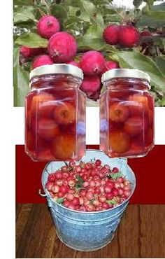 Pickled Crabapples Recipe