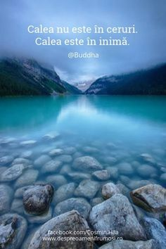 """""""Calea nu este în ceruri. Calea este în inimă."""" - Buddha Seară frumoasă prieteni... oriunde v-ați afla! http://ift.tt/2dRfNzf http://ift.tt/2dUqotH  http://ift.tt/2eTE7Sq"""