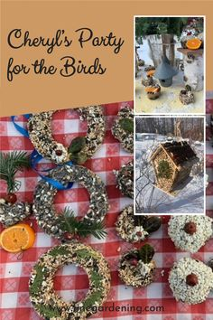 After the wreaths and arrangements are done, Cheryl creates garden crafts for her flying neighbors. Diy Garden Projects, Garden Crafts, Common Garden Plants, Bird Seed Ornaments, England Winter, Fine Gardening, Garden Photos, Winter Garden, Clematis