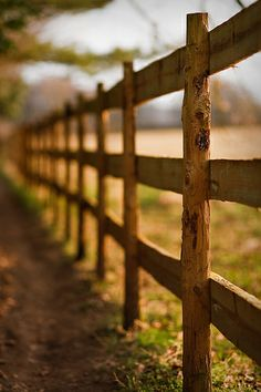Fence in Sunlight Bokeh, Sunlight, Fence, Explore, Nikko, Exploring, Boquet