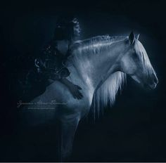 Breathtaking Horse Photos, Horse Pictures, Anime Art Fantasy, Horse Photography, Horse Art, Life Is Like, White Art, Beautiful Horses, Pretty Pictures