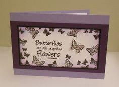 butterflies like flowers