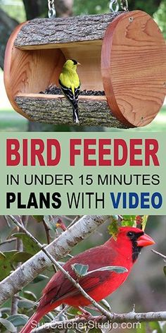 Learn how to make a hanging Bird Feeder from a natural LOG. This homemade DIY bird feeder will attract bluebirds, goldfinches, etc. to yard or garden. Wood Bird Feeder, Bird Feeder Plans, Squirrel Feeder, Bird House Feeder, Hanging Bird Feeders, Rustic Bird Feeders, Unique Bird Feeders, Homemade Bird Houses, Homemade Bird Feeders