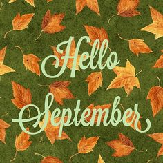 Hello September! So happy to see you again! Background fabric by from the Harvest Botanical collection by Jane Shasky for @henryglassco!  #helloseptember #september #fall #harvest #leaves  #quilt #quilts #quilting #sew #sewing #craft #crafting #diy #fabric #crafts #patchwork #quilter #stitch #cotton #decor #homedecor #apparel #fashion #creativity #creative #happyseptember