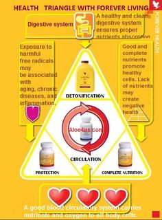 †♥ ✞ ♥† Basic nutritions for a healthy body:  aloe vera gel, forever artic sea, bee propolis & forever bee pollen †♥ ✞ ♥†