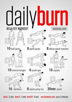 Daily Burn Workout / Full Body Workout Infographic
