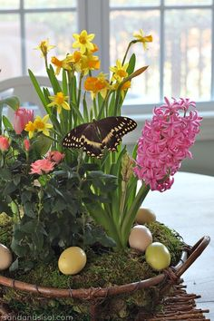 Make your own Spring garden- would make a cute Easter centerpiece. Check out good ol' Trader Joes for loads of inexpensive pre-planted bulb pots. Via Sand and Sisal
