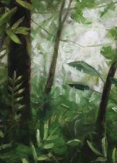In the jungle!