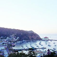 Island+romance,+Catalina-style