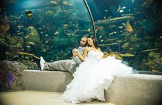 Wedding Photography Virginia Beach Aquarium