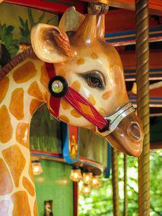 Woodland Park Zoo Carousel - Christine Bennett