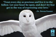 Have you connected with your Animal Spirit Guide lately?