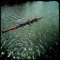 Rowing on the Charles #cambma #cambridgema #charlesriver