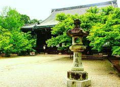 真如堂 新緑  #Shinnyodo ShinsyoGokurakuji Temple /Kyoto Japan  Thank you for seeing.  Have a nice day♪  #京都 #kyoto #真如堂 #真正極楽寺 #pagoda #temple #新緑 #青もみじ  #緑 #春 #もみじ #紅葉 #Maple  #塔 #三重塔 #green #お写んぽ  #ファインダー越しの私の世界  #日本 #japan #love_japan #love_nippon #igersip #instalike  #loves_nippon  #special_spot_  #world_bestnature #nature_special_