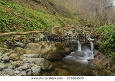 Explore 295 high-quality, royalty-free stock images and photos by tremmel thomas david available for purchase at Shutterstock. Royalty Free Images, Royalty Free Stock Photos, Waterfall, Places To Visit, Cats, Illustration, Pictures, Outdoor, Gatos