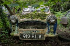Tucked away in the woods, somewhere in northern england is a rustic time capsules slowly taken back by nature. [cycloneslider id=cars] Uk History, Northern England, Photography For Sale, Time Capsule, Any Images, Poster Prints, Woods, Vehicles, Forests