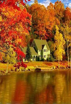 Fall Foliage Photography Tips : landscape photography Beautiful World, Beautiful Places, Beautiful Pictures, Beautiful Gorgeous, Beautiful Scenery, Amazing Places, Fall Pictures, Fall Photos, Autumn Scenes