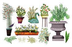 Muchos Bichos; by Paola Escobar Nature Illustration, Floral Illustrations, Animation Portfolio, Plant Tattoo, Interior Design Sketches, Prop Design, Plant Art, Drawing Techniques, Painting Inspiration