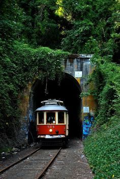 You'll also get the chance to pass through the historic (and beautiful) Elk Rock Tunnel, built in 1912.