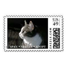 Gabe postage stamp:  SPAY * NEUTER * ADOPT. Wanna make each letter a special delivery? Try to customize this great stamp template and put a personal touch on the envelope. Just click the image to get started!